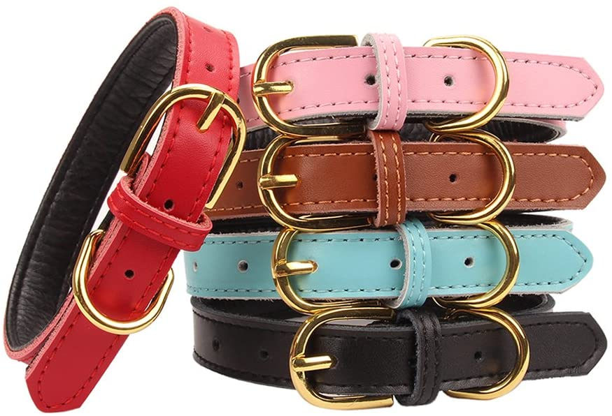 AOLOVE Classic Padded Leather Collar