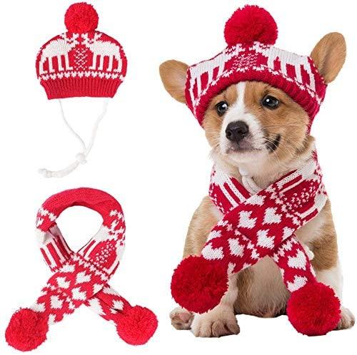 BINGPET Christmas Costume